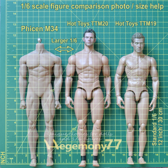 1 6 scale figure sizes help comparison photo with INCHES - larger Phicen M34 and Hot Toys TTM 20 and standard 12 inch TTM 19.jpg