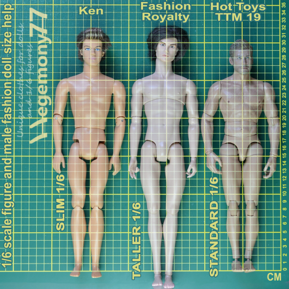 1 6 scale figure and fashion dolls sizes help comparison photo with Centimeters - Ken - Fashion Royalty Homme and standard 30 cm Hot Toys TTM 19.jpg